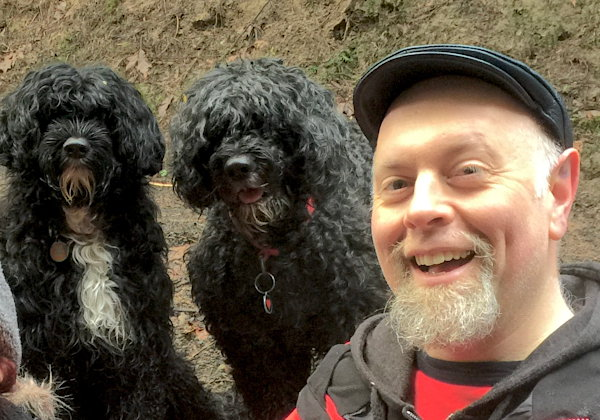 Cyrus and two Portuguese Water Dogs